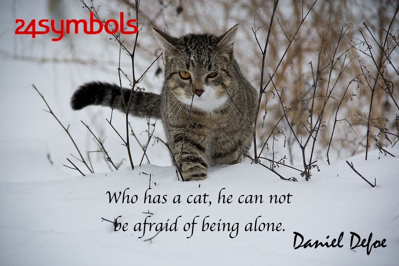 Daniel Defoe Cat Quote