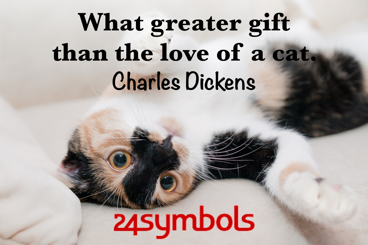 Charles Dickens Cat Quote