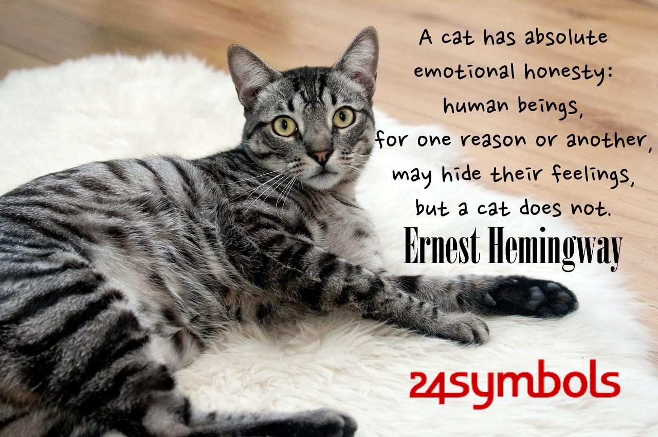 Ernest Hemingway Cat Quote