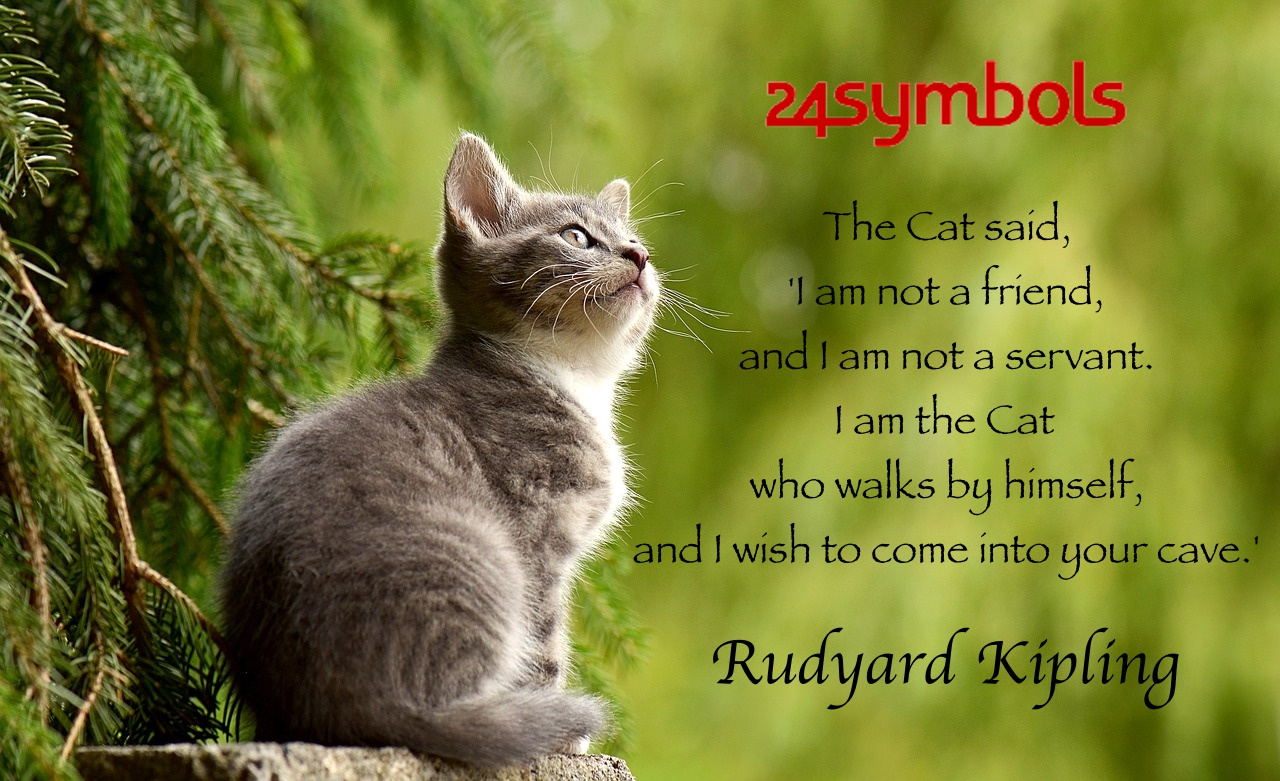 Rudyard Kipling Cat Quote