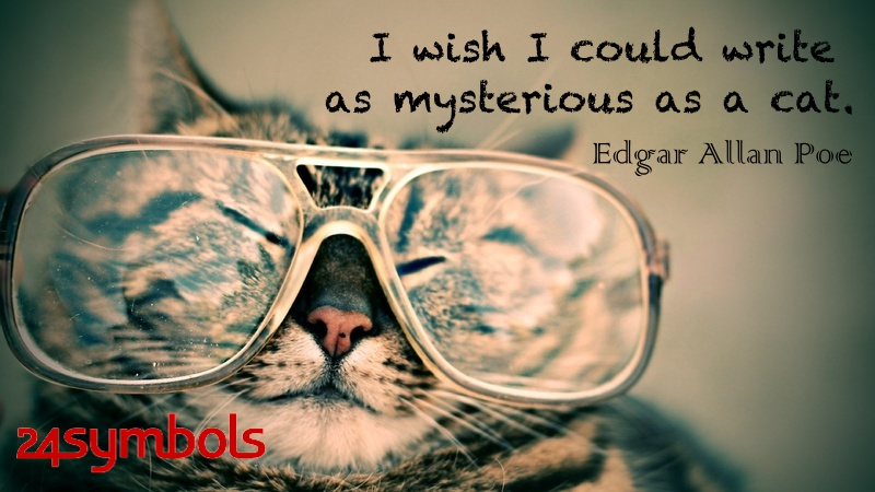 Edgar Allan Poe Cat Quote
